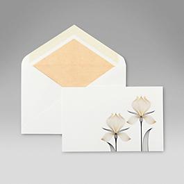 Irises Correspondence Cards