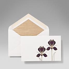 Iris Correspondence Cards