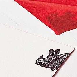 Biglietti di corrispondenza animale rinoceronte archivio