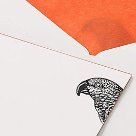 Grußkarten mit Papageienmotiv aus dem Archiv