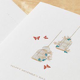Biglietto d'auguri per la Festa della mamma con gabbia per uccelli